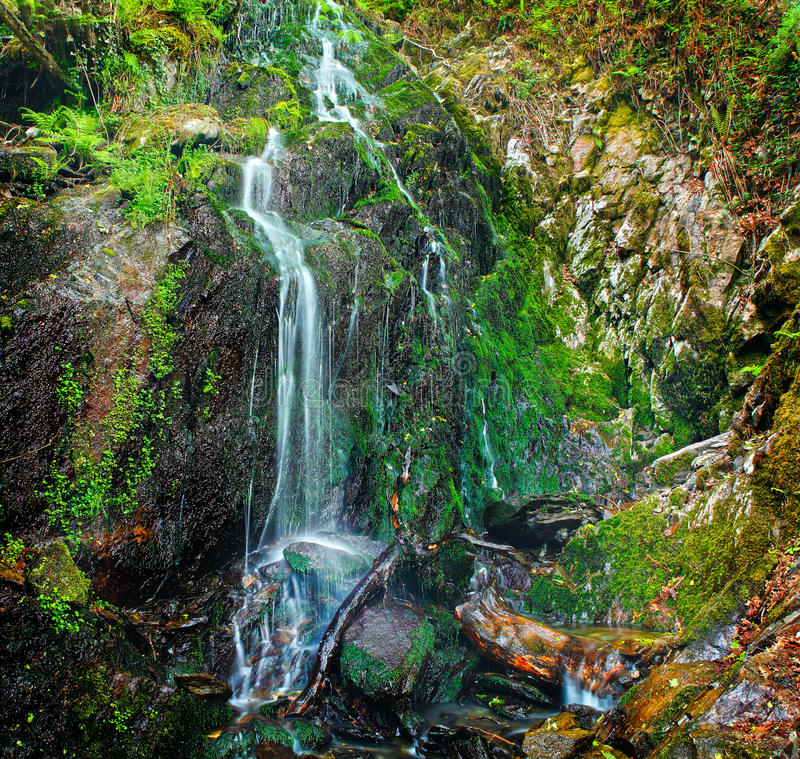 Cascading spring water. Cascading natural spring water down a moss covered rock wall royalty free stock photos
