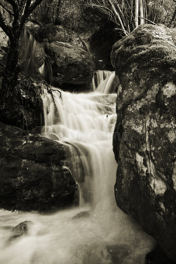 Cascading Stream in Sepia royalty free stock images