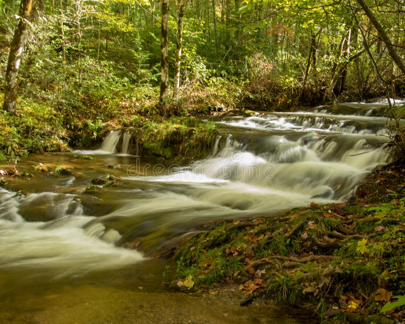 Cascading stream in Smokey Mountains National Park stock photography