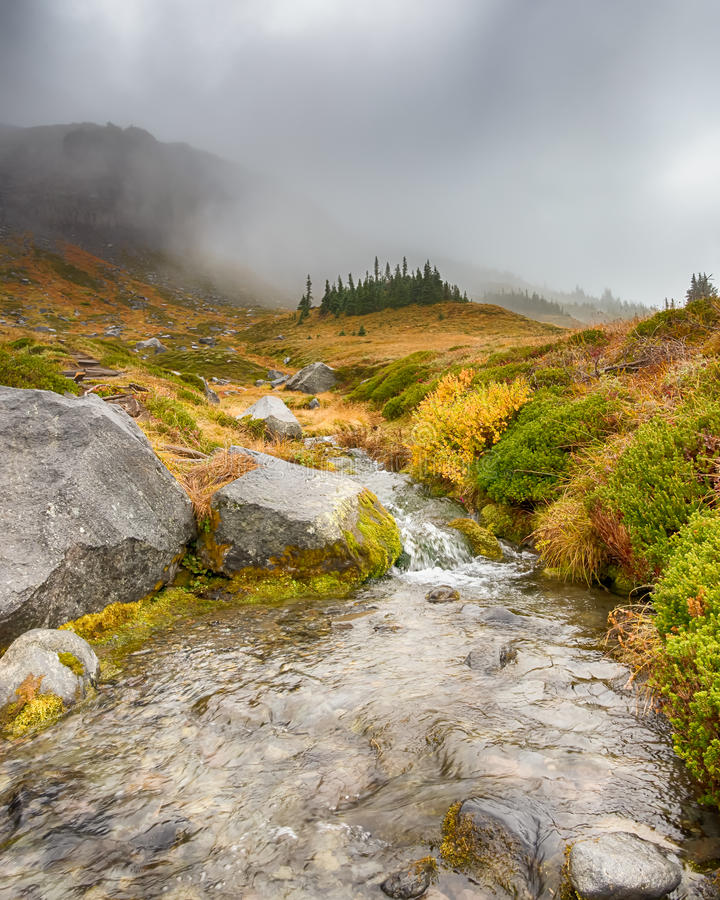 Cascading Stream, Wonderland Trail, Mount Rainier National Park, WA. Cascading stream against a backdrop of misty autumn colors, on the Wonderland Trail, near stock image