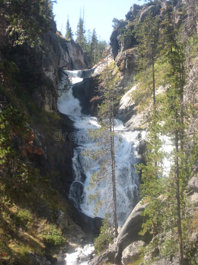 A cascading waterfall in Yellowstone National Park royalty free stock photos