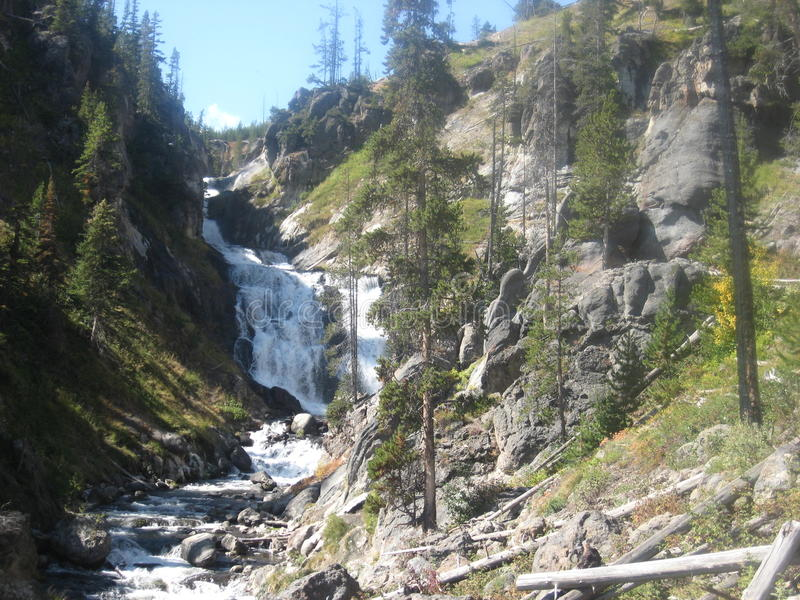A cascading waterfall in Yellowstone National Park royalty free stock photography