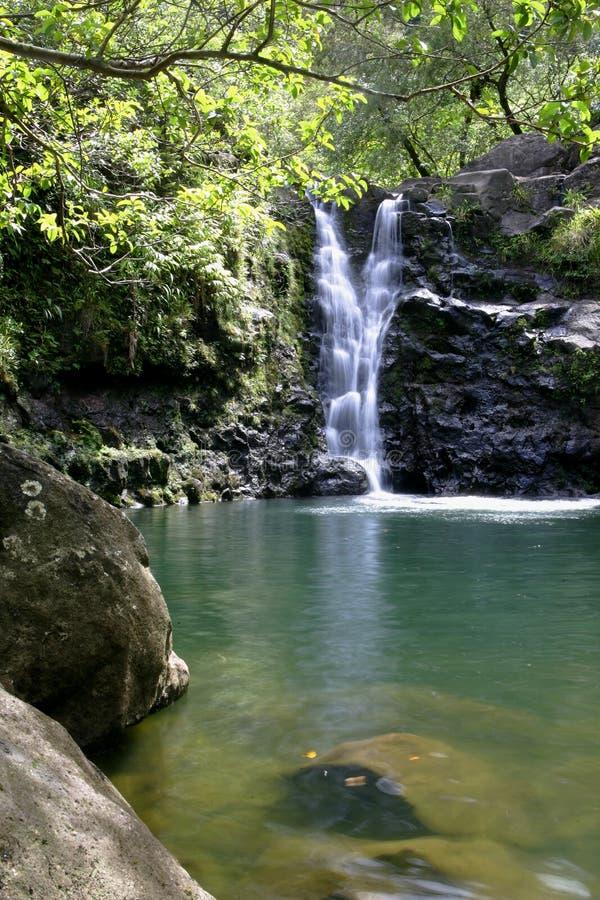 Cascata #1 dell'Hawai fotografia stock libera da diritti
