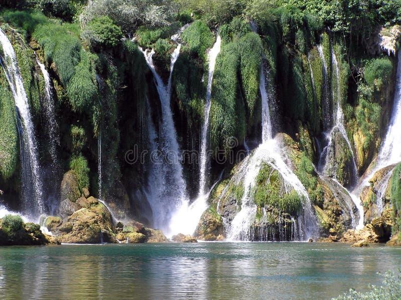 Download Cascata (3) immagine stock. Immagine di verde, salto, foresta - 206505