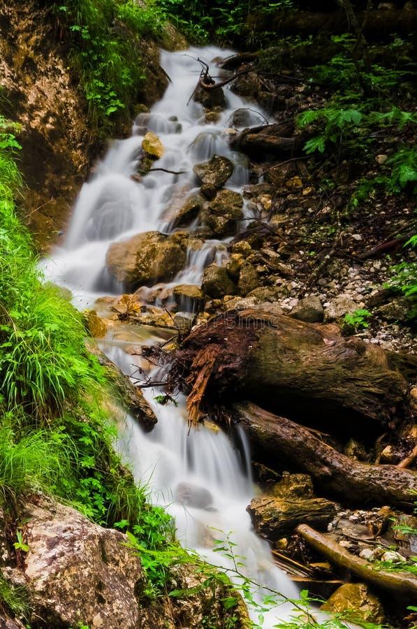 Download Cascata fotografia stock. Immagine di brown, verde, weekend - 56886624