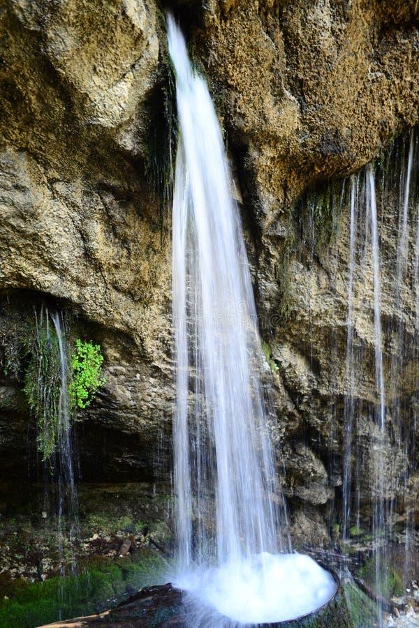 Cascata in Abkhazia Bella piccola cascata nelle montagne in Abkhazia fotografia stock
