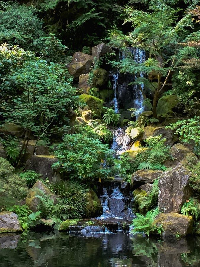 Cascata ai giardini giapponesi immagini stock
