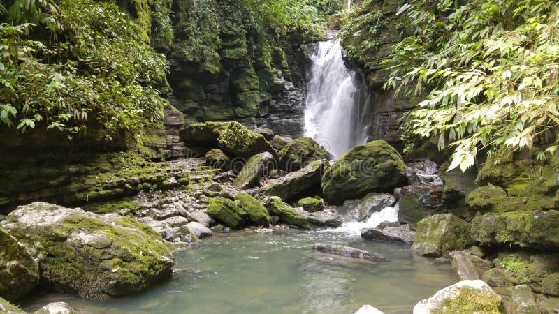 Cascata amazzoniana con le rocce e le piante fotografia stock