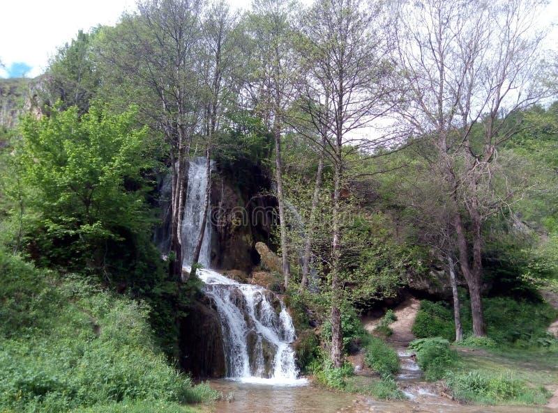 Cascata Bigar in poca foresta immagini stock