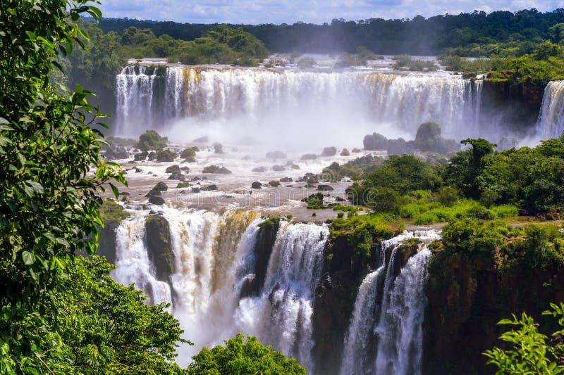 Cascata bonita das cachoeiras. Iguassu cai em Brasil foto de stock