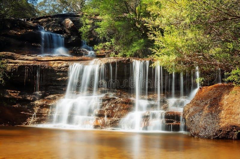 Cascata bonita - a série superior de Wentworth Falls em dourado imagens de stock