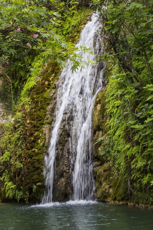 Cascata in caverna naturale Bagno dell'Afrodite cyprus immagine stock