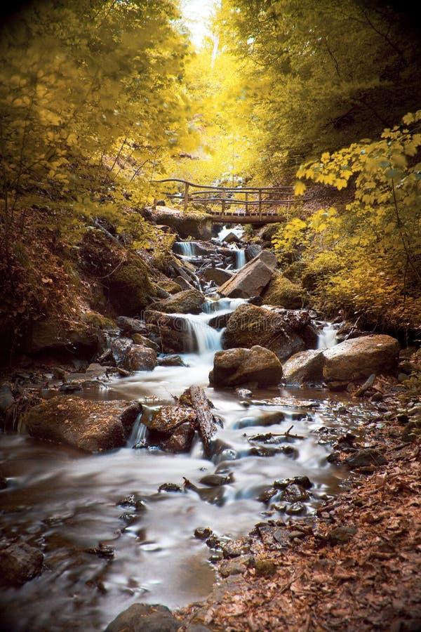 Cascata con le rocce in un paesaggio di autunno fotografia stock libera da diritti