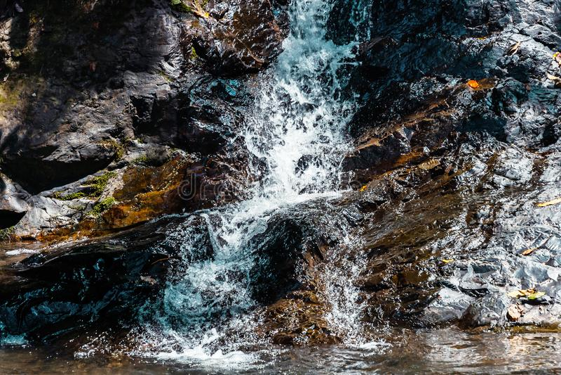 Cascata da cachoeira e da floresta úmida verde em Ásia fotos de stock royalty free