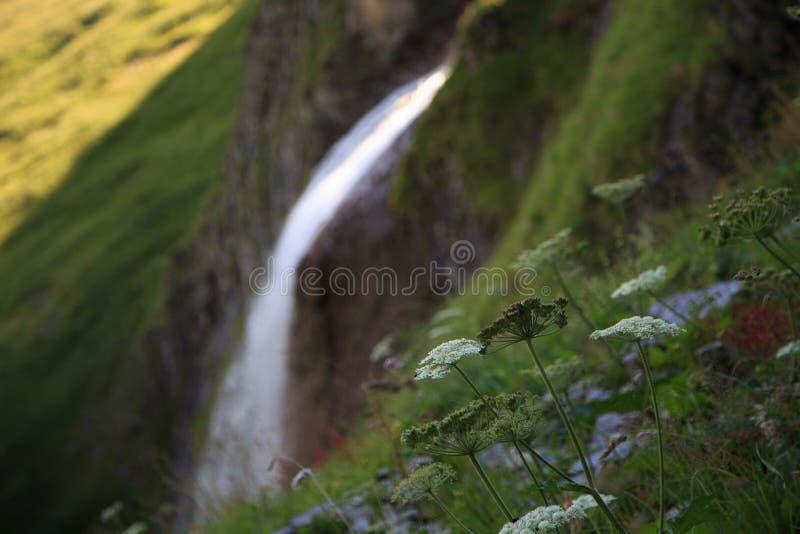 Cascata de Schleierfall em Tux Tyrol imagens de stock