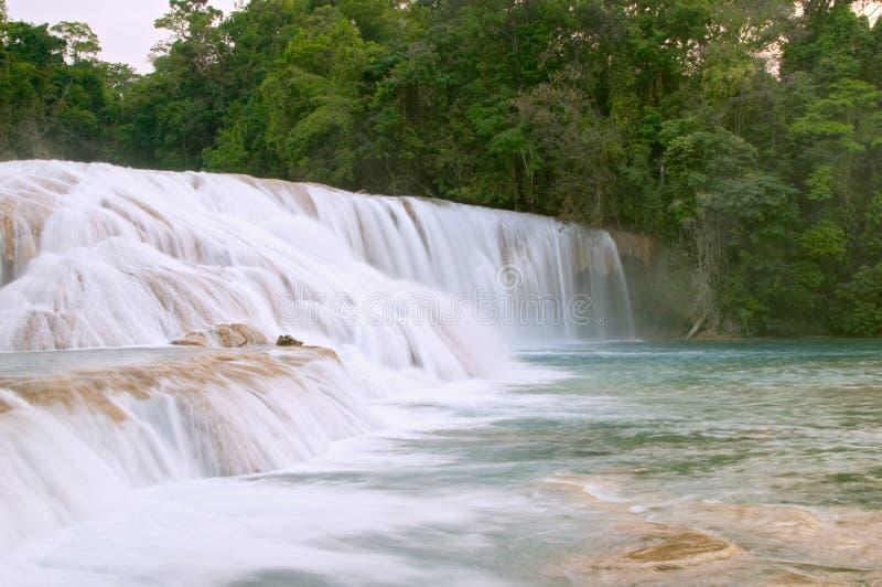 Cascata del Cascadas de Agua Azul immagine stock