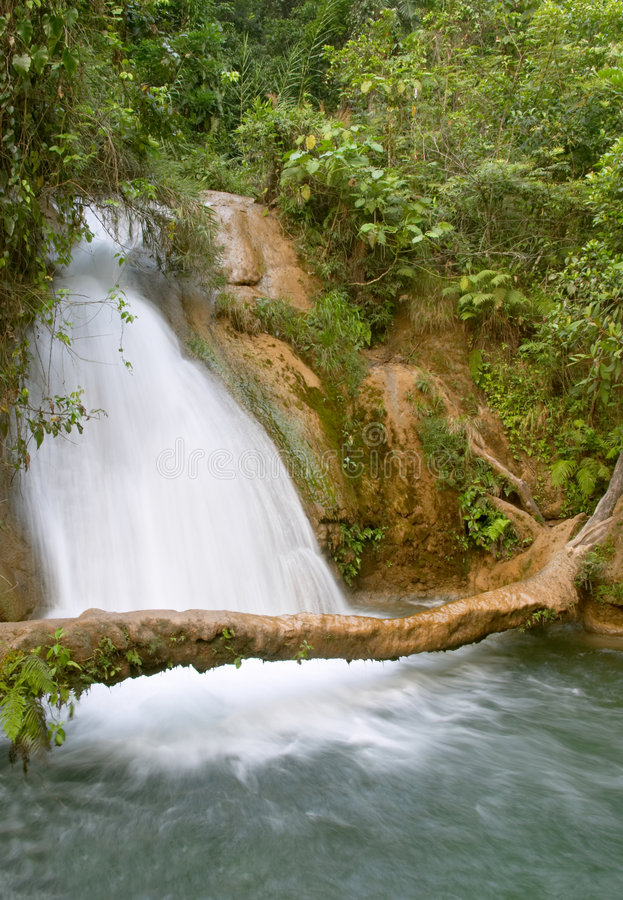 Cascata del Cascadas de Agua Azul fotografia stock