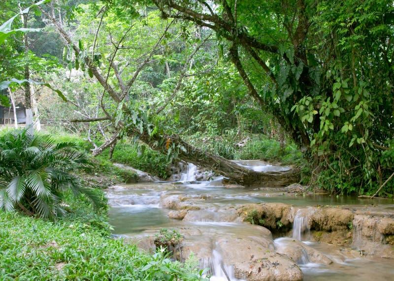 Cascata del Cascadas de Agua Azul fotografia stock libera da diritti