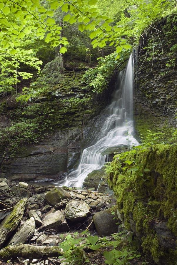 Cascata del Grotto fotografie stock