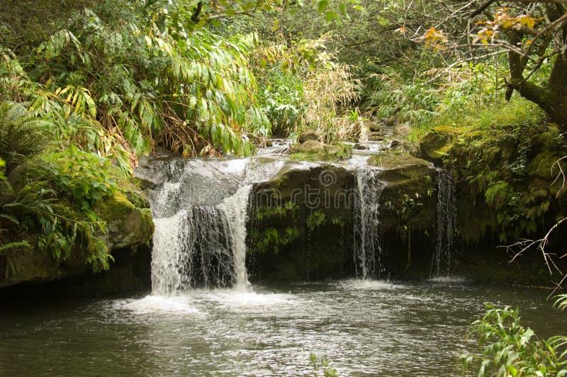 Cascata dell'Hawai fotografie stock