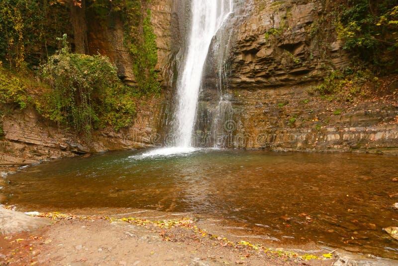 Cascata della foresta, Georgia immagine stock libera da diritti