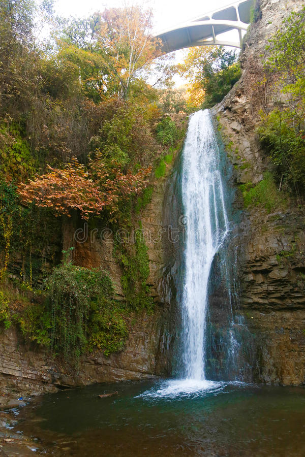 Cascata della foresta, Georgia immagini stock libere da diritti
