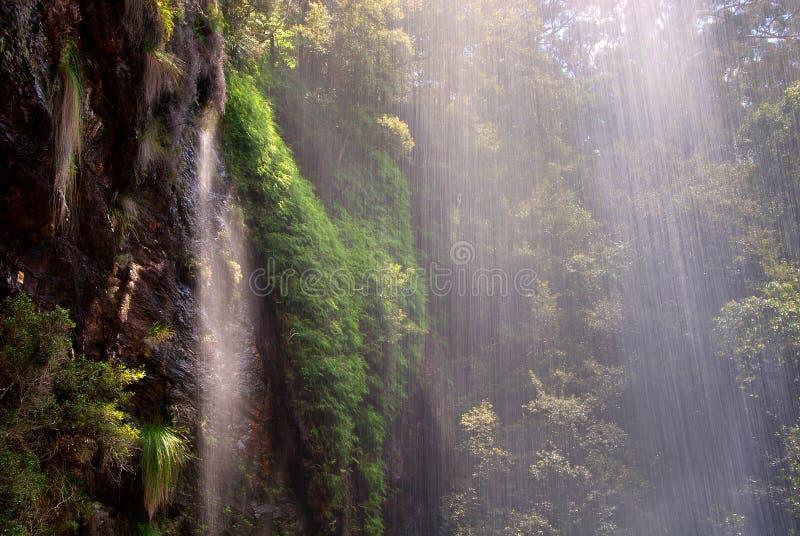 cascata della foresta pluviale fotografia stock