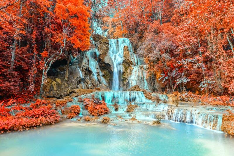 Cascata della foresta pluviale, Tat Kuang Si Waterfall a Luang Prabang, Loas immagini stock libere da diritti