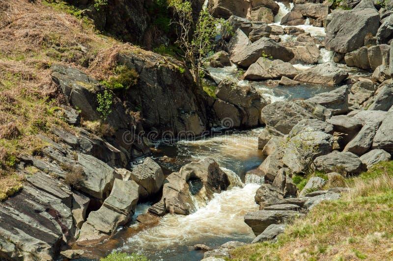 Cascata della montagna nella valle di slancio di Powys, Galles immagine stock