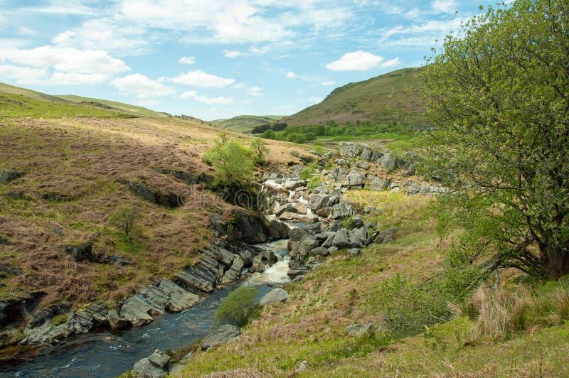 Cascata della montagna nella valle di slancio di Powys, Galles fotografia stock libera da diritti