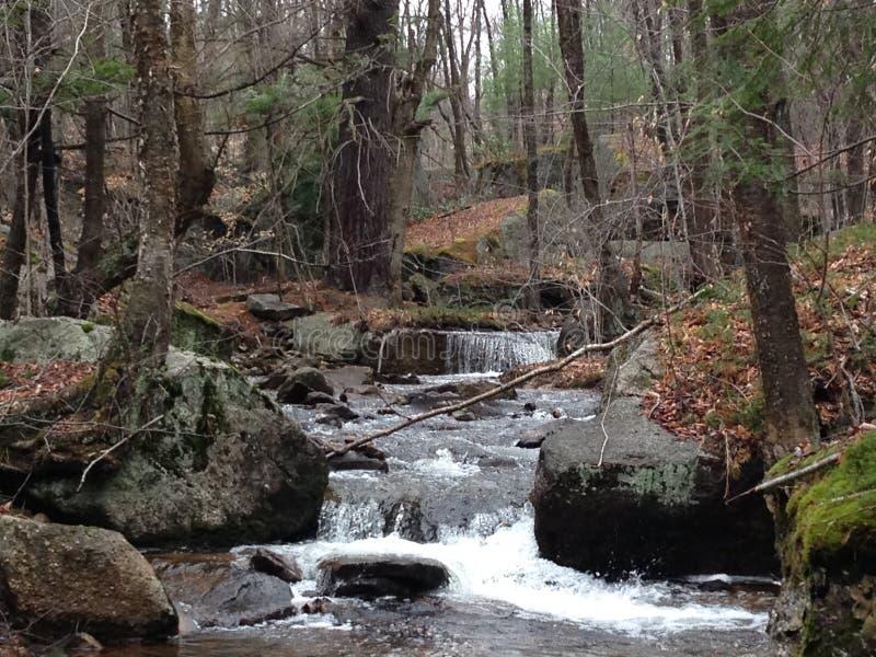 Cascata della montagna pacifica fotografie stock libere da diritti