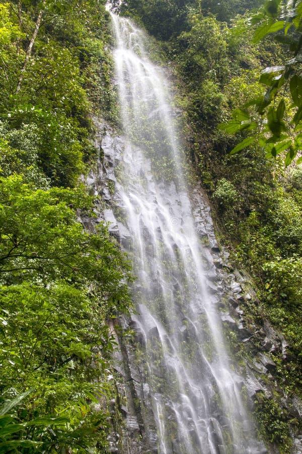 Cascata di Fortuna della La nel parco nazionale di Arenal, Costa Rica immagini stock libere da diritti