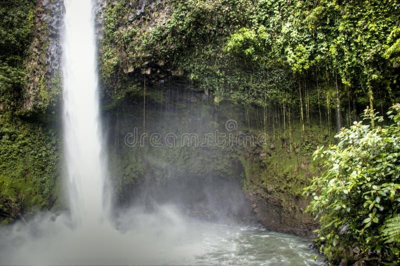 Cascata di Fortuna della La nel parco nazionale di Arenal, Costa Rica fotografia stock
