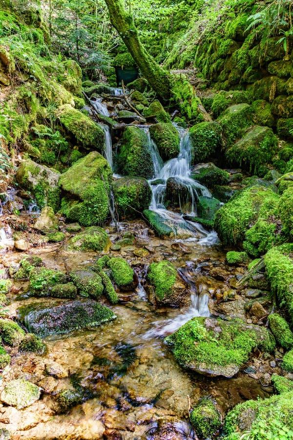 Cascata di Gertelsbach, Germania mentre facendo un'escursione fotografie stock libere da diritti