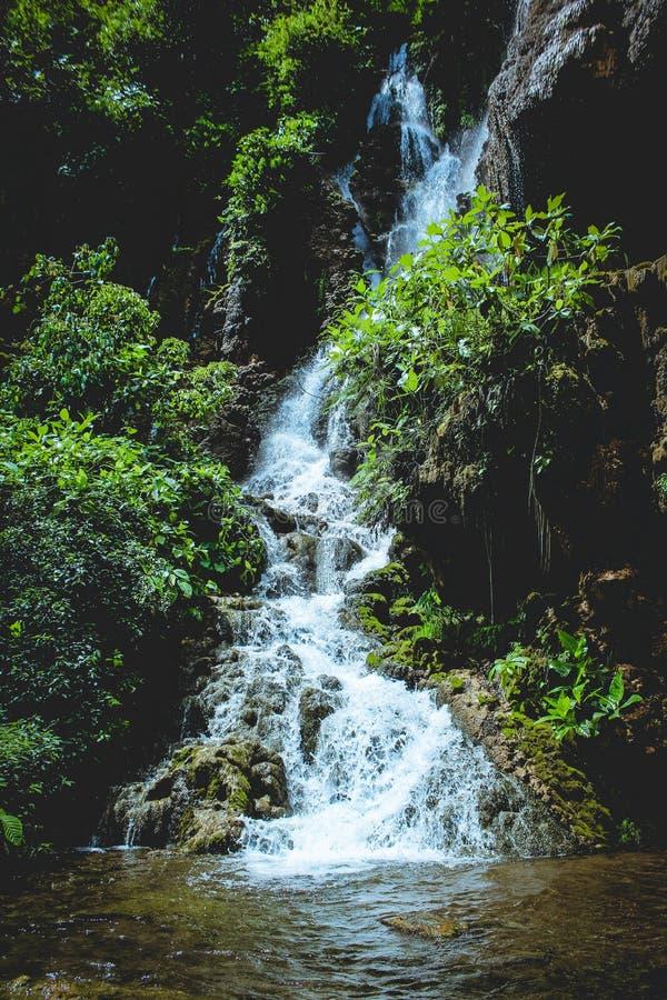 Cascata di Goa Tetes fotografia stock libera da diritti