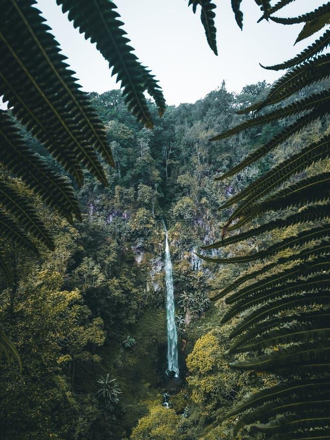 Cascata di grande di ondo di Watu fotografia stock