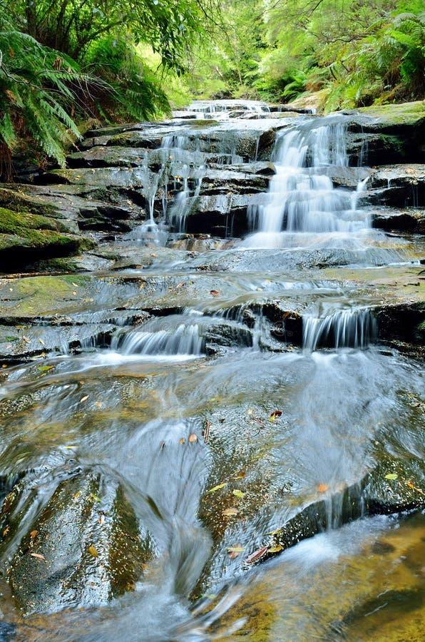 Cascata di Leura immagine stock