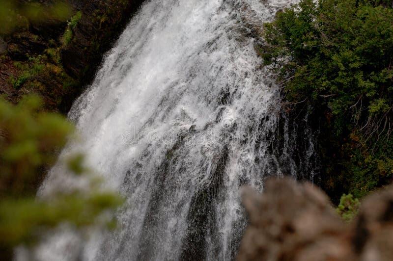 Cascata di nord-ovest pacifica Mt più piovosa fotografia stock libera da diritti