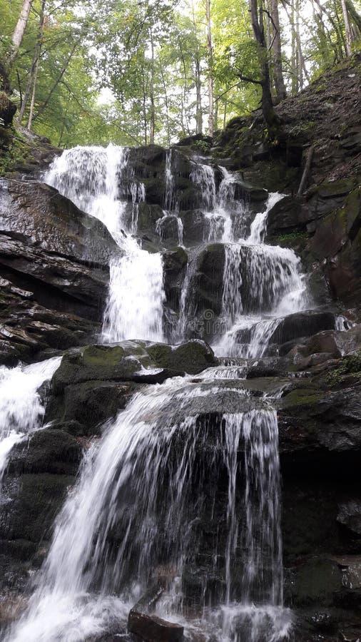 Cascata di Shypit nei Carpathians l'ucraina fotografia stock libera da diritti