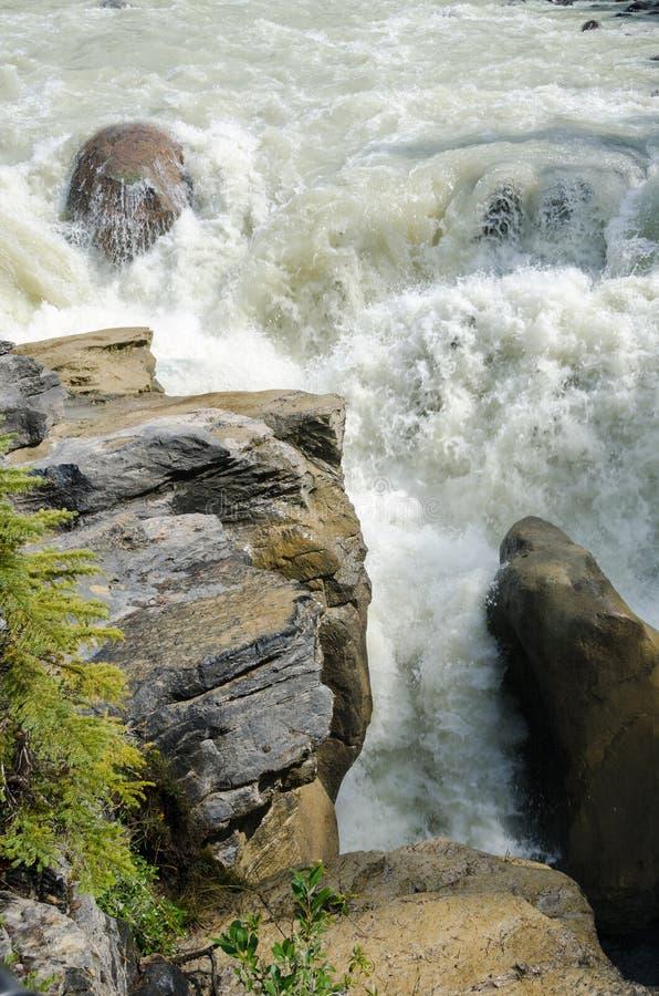 Cascata di Sunwapta fotografia stock