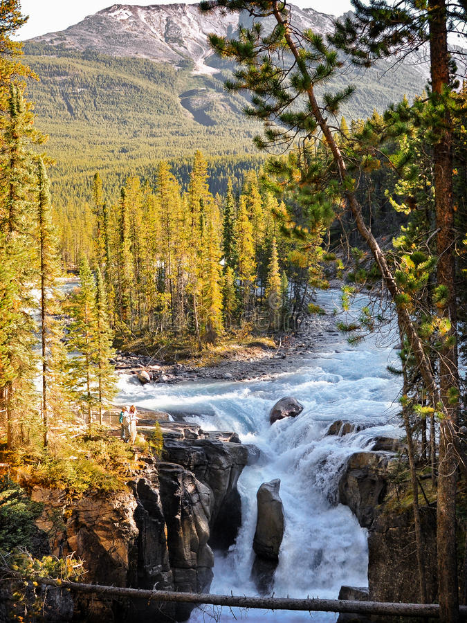 Cascata di Sunwapta, Jasper National Park, Alberta, Canada fotografia stock