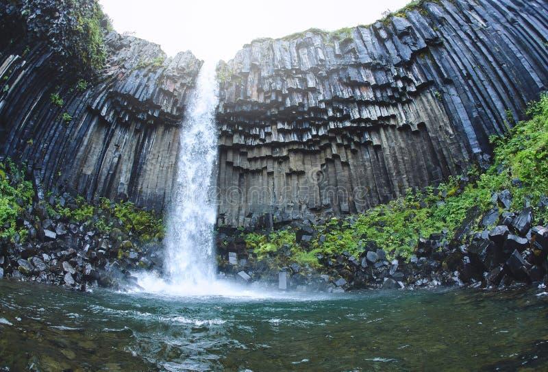 Cascata di Svartifoss circondata dalle colonne del basalto nel sud dell'Islanda immagini stock