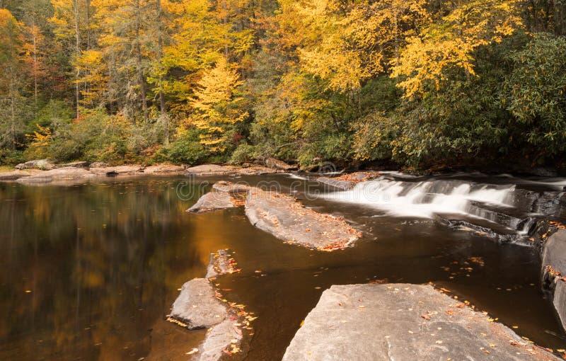 Cascata e foresta nella caduta fotografia stock libera da diritti