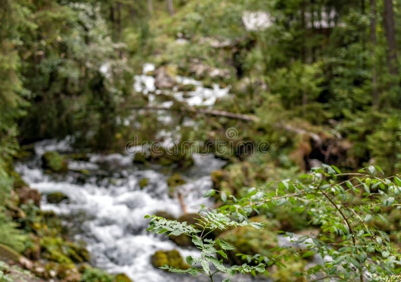 Cascata e mulino a acqua vicino a Salisburgo, alpi di Golling fotografia stock