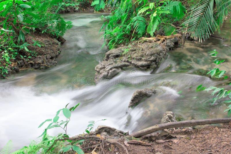 Cascata e rocce coperte di muschio in foresta profonda fotografia stock