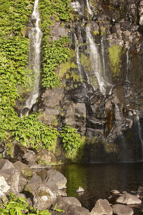 Cascata e stagno nell'isola del Flores, Azzorre Poco fa Bacalhau fotografia stock libera da diritti