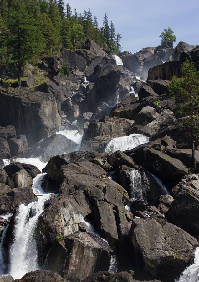 Cascata ed alberi di pietra sulle rocce immagine stock libera da diritti