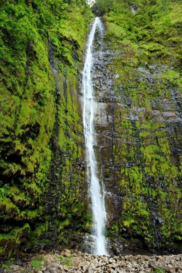 Cascata famosa di cadute di Waimoku alla testa della traccia di Pipiwai, superiore a sette stagni sacri sulla strada a Hana Maui, fotografia stock
