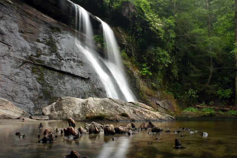 Cascata fertile della foresta pluviale fotografia stock
