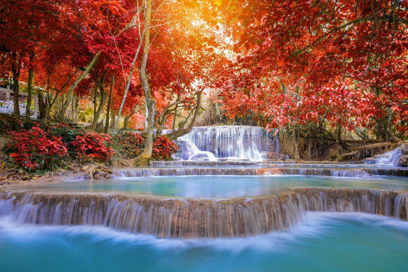Cascata in foresta pluviale (Tat Kuang Si Waterfalls al prab di Luang fotografia stock